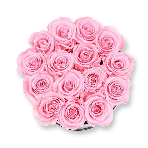 Modern | Large | Bridal Pink (Hellrosa)