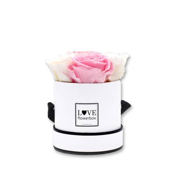 Flowerbox Modern | Small | Rosen weiss-rosa