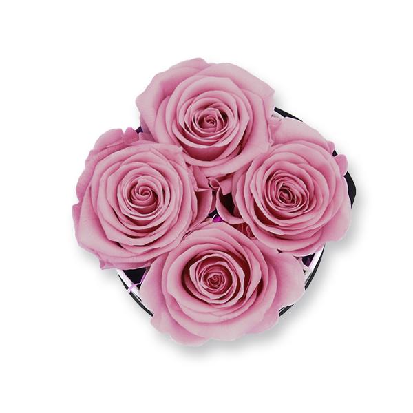 Rosenbox Infinity Rosen alt rosa | Flowerbox | Blumenbox | S Modern b gold