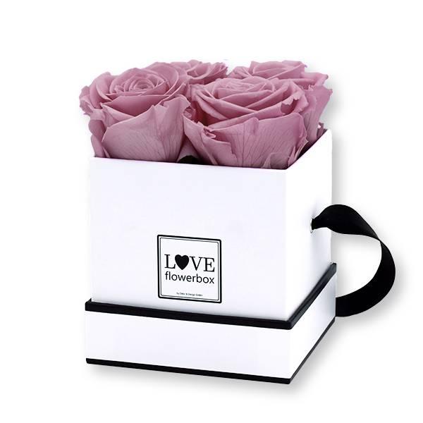 Flowerbox Modern | Small | Rosen Mauve (Altrosa)