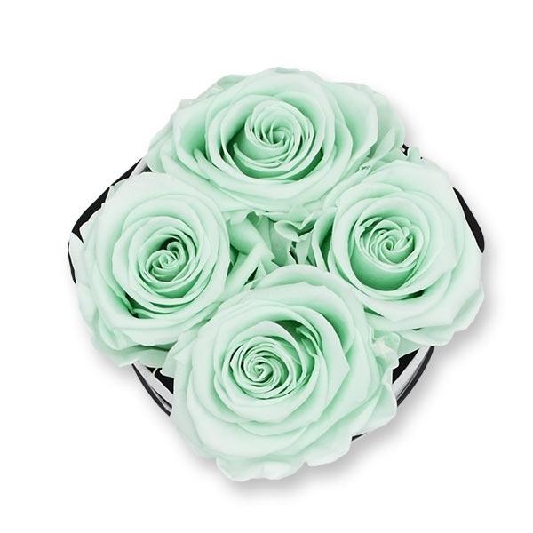 Modern   Small   Minty Green (Mint)