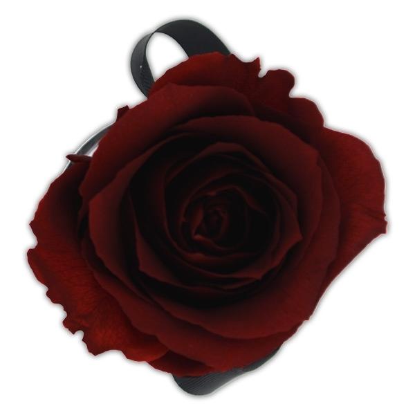 Rosenbox Infinity Rosen bordeaux | Flowerbox | Blumenbox | XS Modern black