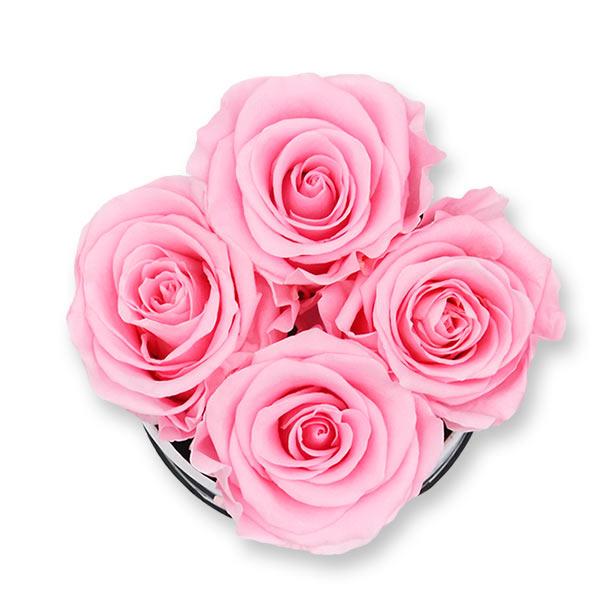 Rosenbox Infinity Rosen rosa | Flowerbox | Blumenbox | S Modern b gold