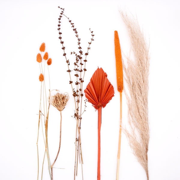 Trockenblumen Set Amber