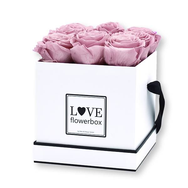 Flowerbox Modern   Medium   Rosen Mauve (Altrosa)