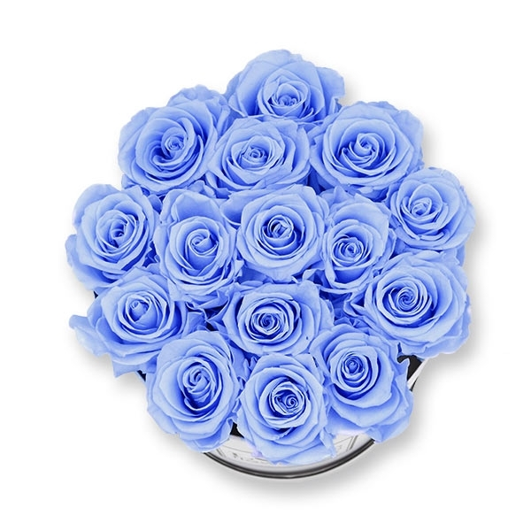 Rosenbox Infinity Rosen hell blau | Flowerbox | Blumenbox | L Modern white
