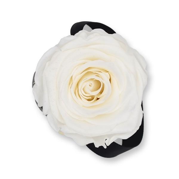 Rosenbox Infinity Rosen weiss | Flowerbox | Blumenbox | XS Modern black