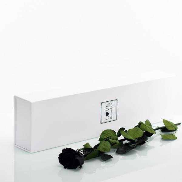 Flowerbox Lang | Classic | Rosen Black (Schwarz)