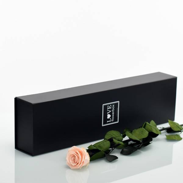 Flowerbox Lang   Classic   Rosen Pastell Rose (Pastellrosa)