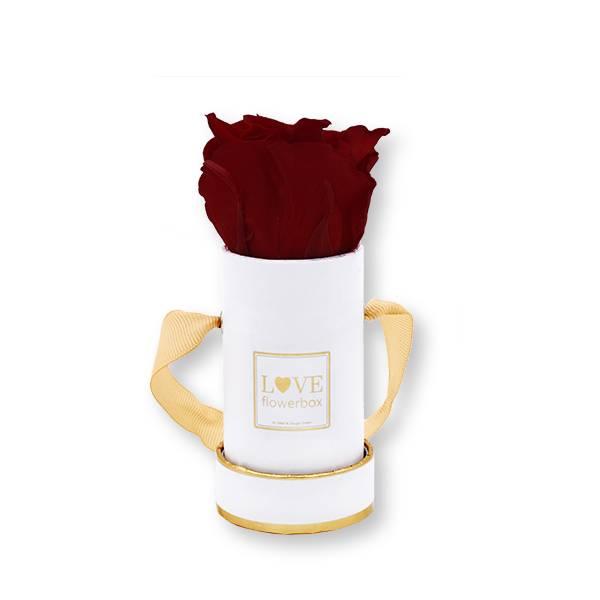 Flowerbox Modern gold | Mini | Rosen Burgundy (Bordeaux)