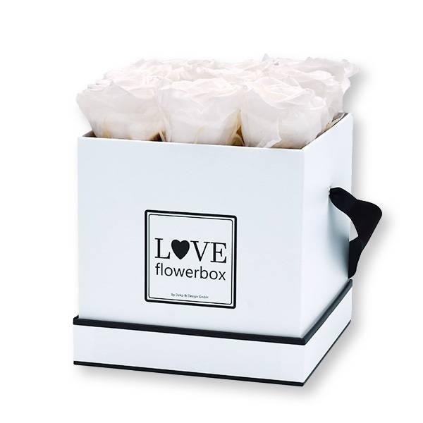 Flowerbox Modern | Medium | Rosen Pure White (Weiß)