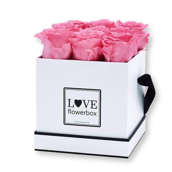 Flowerbox Modern | Medium | Rosen Baby Pink (Rosa)