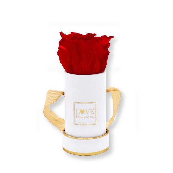 Flowerbox_rosenbox_blumenbox_rund_weiss_gold_Mini_infinity_Rosen_vibrant_red_rot.jpg