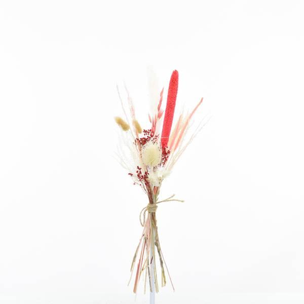 Love_dried_flowers_Trockenblumenstrauss_Trockenblumen_Strauss_Trockenstrauss_getrocknete_Blumen_Korallentraum_Small.jpg