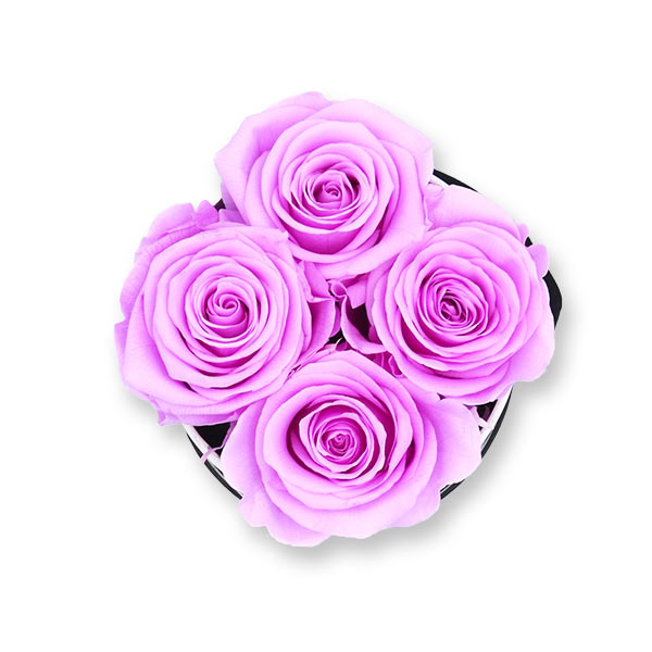 Rosenbox Infinity Rosen flieder | Flowerbox | Blumenbox | S Modern w gold