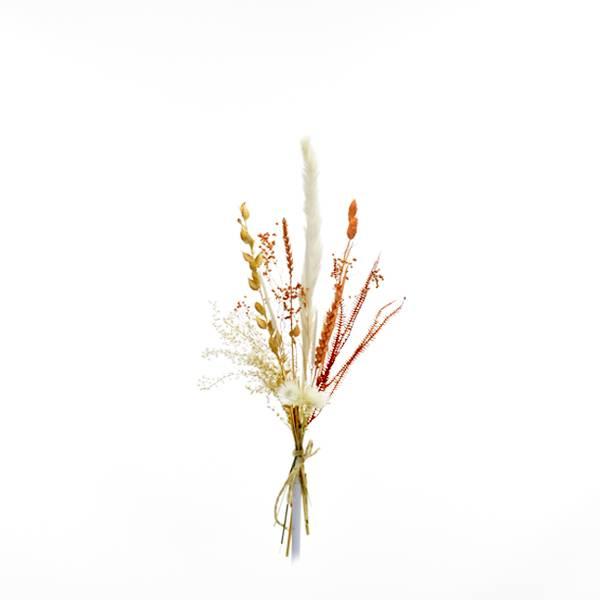 Trockenblumenstrauß Pastellzauber S   Trockenblumen weiss-aprikot