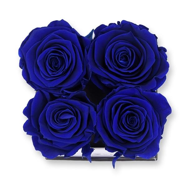 Flowerbox Modern | Small | Rosen Dark Blue (Dunkelblau)