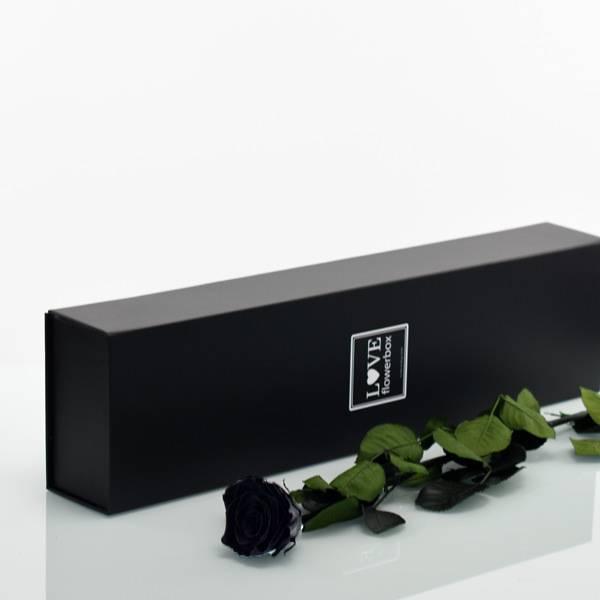 Flowerbox Lang   Classic   Rosen Black (Schwarz)