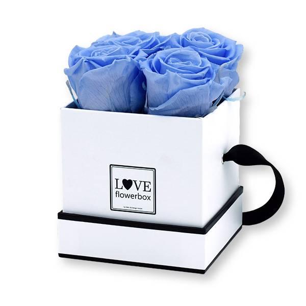 Flowerbox Modern   Small   Rosen Baby Blue (Hellblau)