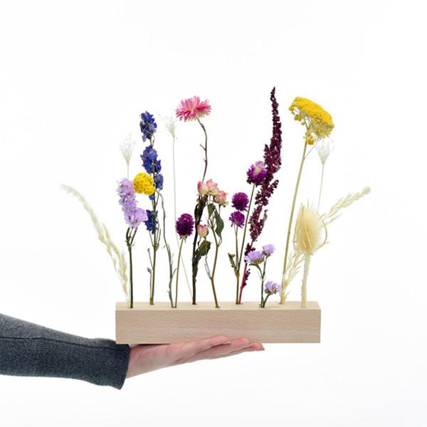 Trockenblumen | Blütenleiste | Sommerwiese | gelb-rosa-pink-blau-flieder