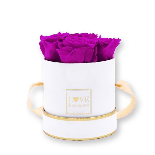 Flowerbox Modern gold | Small | Rosen Purpur (Lila)