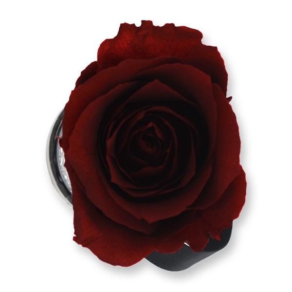 Rosenbox Infinity Rosen bordeaux | Flowerbox | Blumenbox | XS Modern w gold