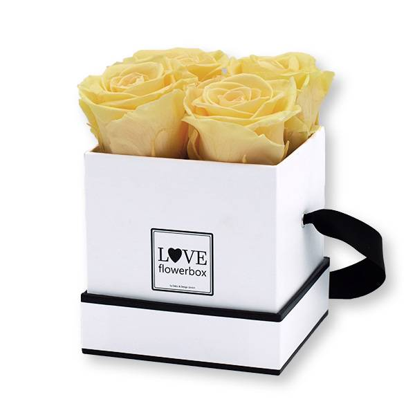 Flowerbox Modern | Small | Rosen Peach (Pfirsich)