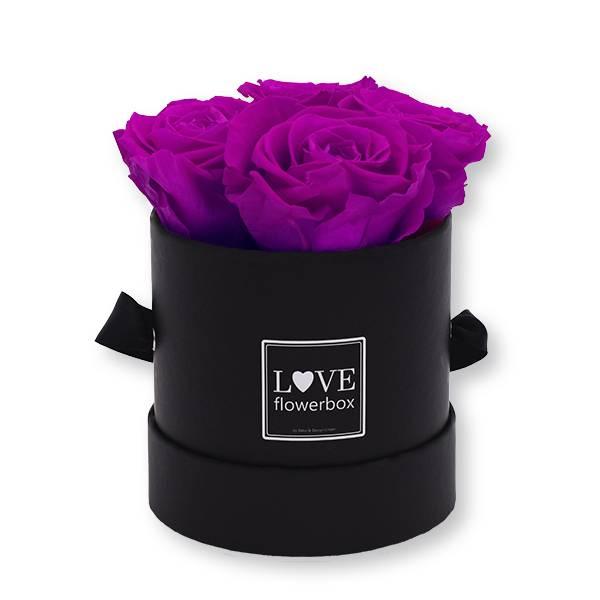 Flowerbox Modern   Small   Rosen Purpur (Lila)