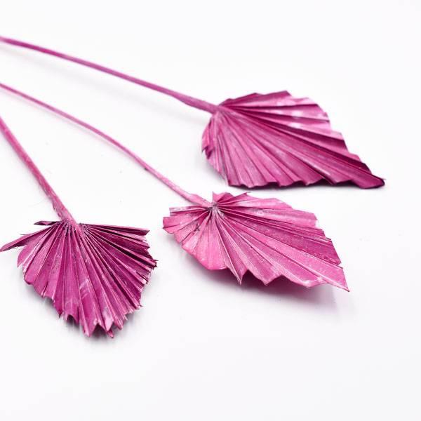 Love_dried_flowers_Trockenblumen_getrocknete_Blumen_Palmspear_erika_3_Stiele_2.jpg
