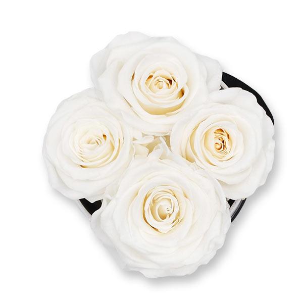Rosenbox Infinity Rosen weiss | Flowerbox | Blumenbox | S Modern b gold