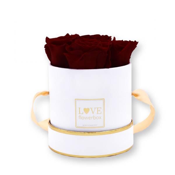 Flowerbox Modern gold | Small | Rosen Burgundy (Bordeaux)