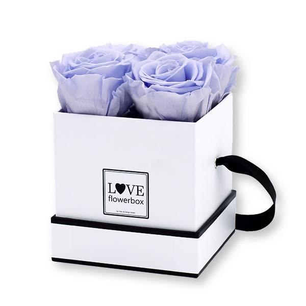 Flowerbox Modern | Small | Rosen Cool lavender (Eisblau)