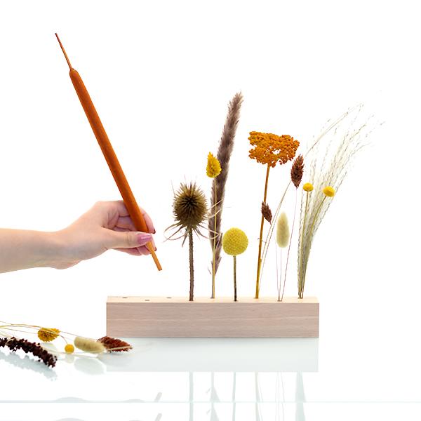 Trockenblumen | Blütenleiste | Wiesenliebe | natur-gelb-braun