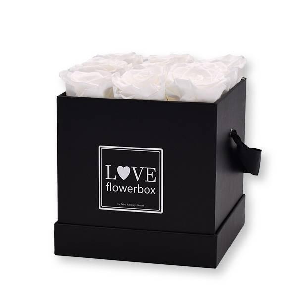 Flowerbox Modern   Medium   Rosen Pure White (Weiß