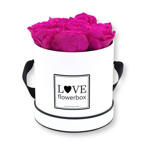 Flowerbox Modern   Medium   Rosen Hot Pink (Pink)