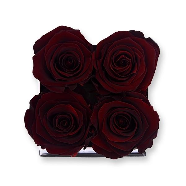 Rosenbox Infinity Rosen Bordeaux | Flowerbox eckig | S Modern white
