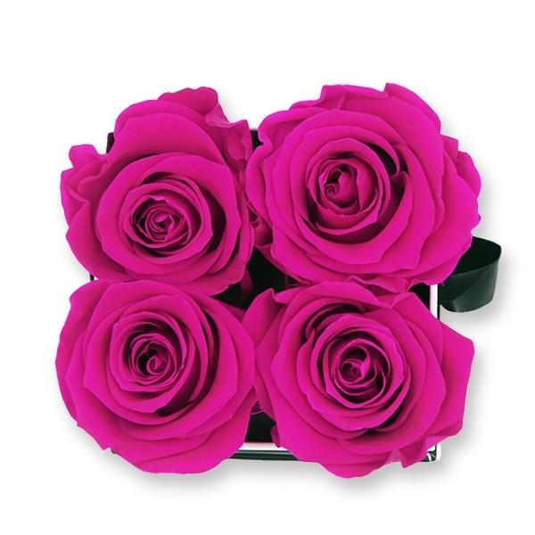 Flowerbox Modern | Small | Rosen Hot Pink (Pink)