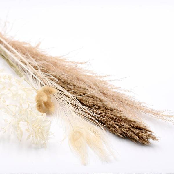 Love_Dried_Flowers_Trockenblumen_Set_natur_Pfauenfeder_weiss.jpg