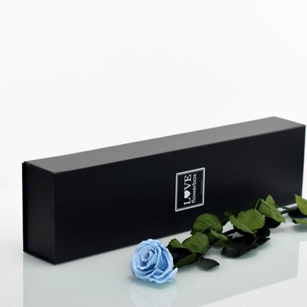 Flowerbox Lang | Classic | Rosen Baby Blue (Hellblau)