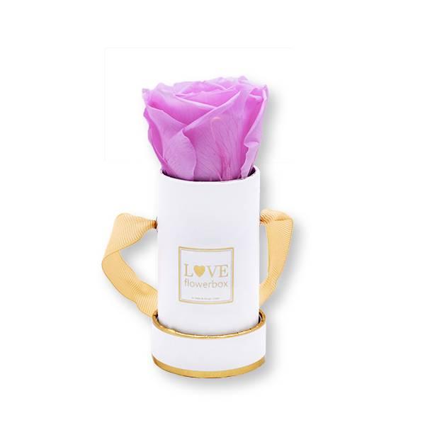 Flowerbox_rosenbox_blumenbox_rund_weiss_gold_Mini_infinity_Rosen_babylilli_flieder_.jpg