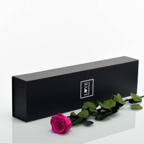 Love_Flowerbox_Langbox_schwarz_Infinity_Rose_langstielig_rasberry.jpg