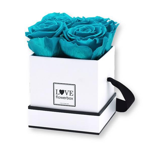 Flowerbox Modern   Small   Rosen Aqua (Türkis)