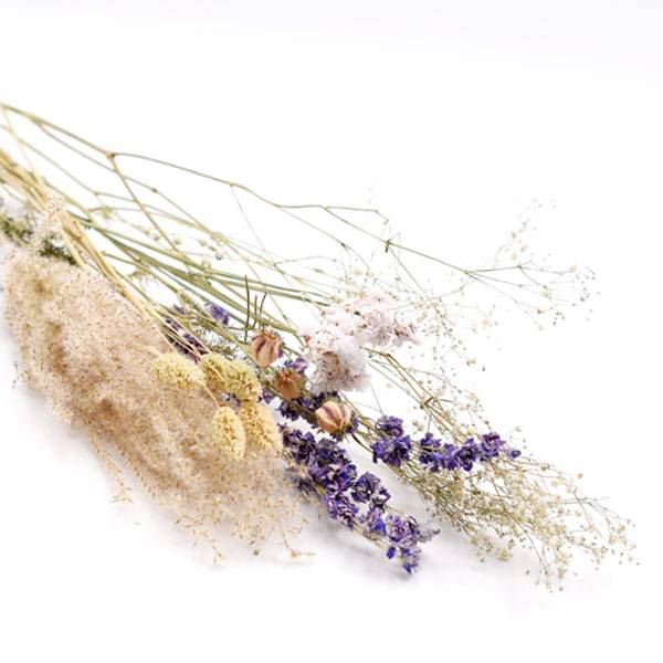 Love_Dried_Flowers_Trockenblumen_Set_blau.jpg