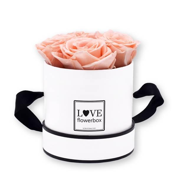 Flowerbox Modern | Small | Rosen Pastellrosa