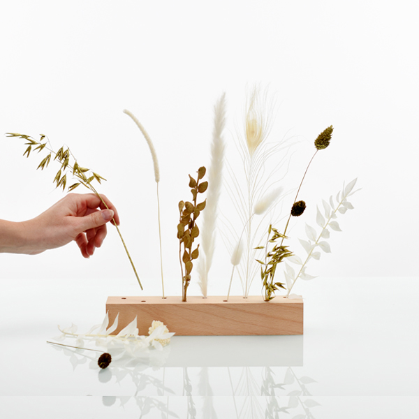 Trockenblumen | Blütenleiste | Goldene Eleganz | weiss-gebleicht-gold