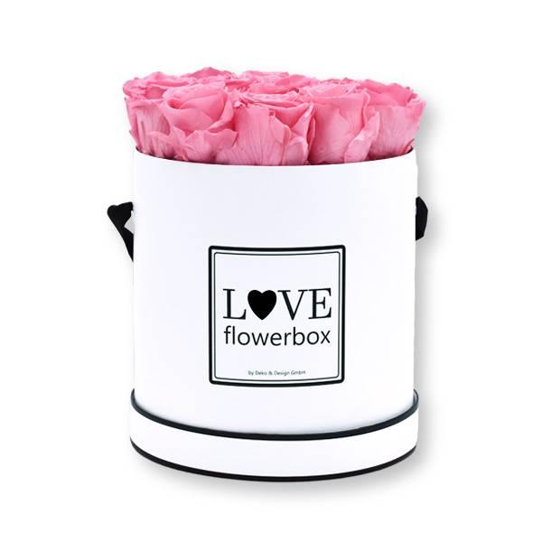 Flowerbox Modern | Large | Rosen Baby Pink (Rosa)