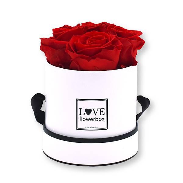 Flowerbox_rosenbox_blumenbox_rund_Small_weiss_Infinity_Rosen_vibrantred_rot.jpg