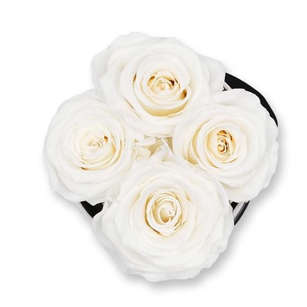 Rosenbox Infinity Rosen weiss   Flowerbox   Blumenbox   S Modern black