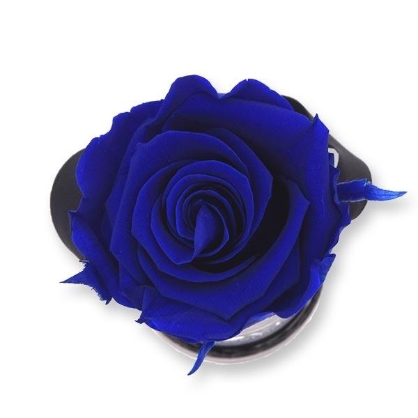 Rosenbox Infinity Rosen dunkel blau   Flowerbox   Blumenbox   XS Modern black