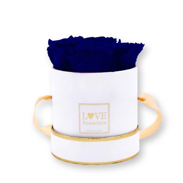 Flowerbox Modern gold | Small | Rosen Dark Blue (Dunkelblau)